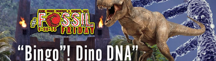 """""""Bingo! Dino DNA."""""""