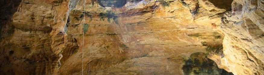 Ice Age fossils found in ancient sinkhole in Wyoming